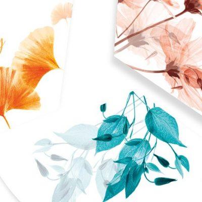 Maison Berger Aroma Fragrance Refills